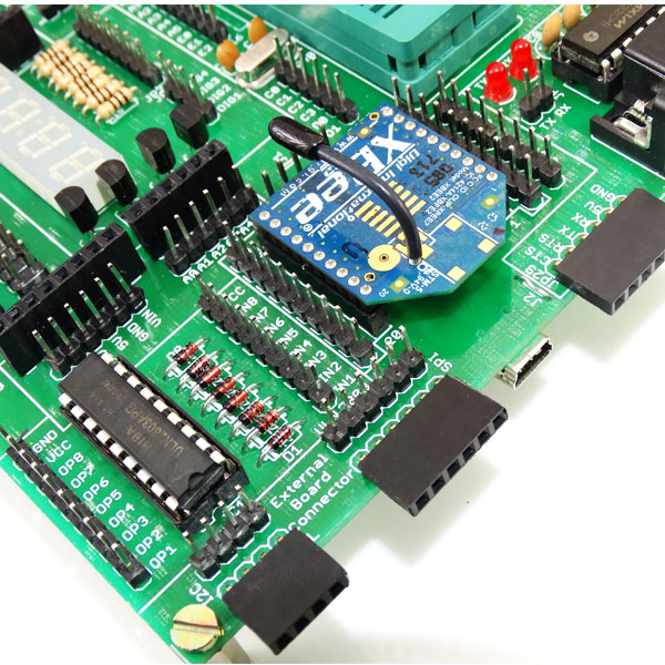 8051 Development Board Usb